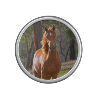 Horse In The Woods Bluetooth Speaker