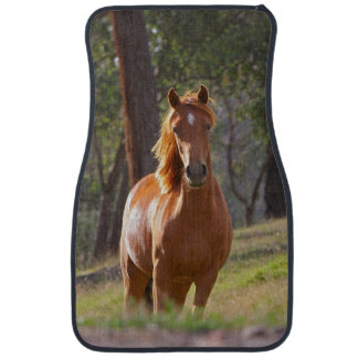 Horse Racing Car Floor Mats Zazzle