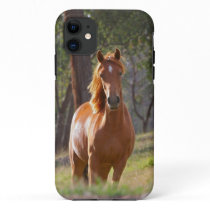 Horse In The Woods iPhone 11 Case