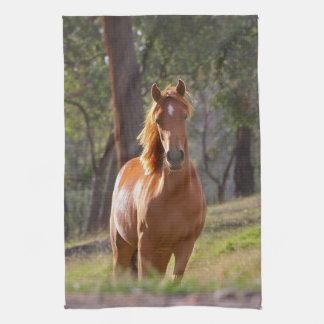 Horse In The Woods Hand Towels