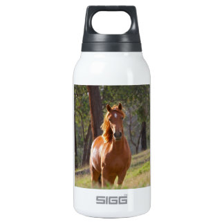 Horse In The Woods Insulated Water Bottle