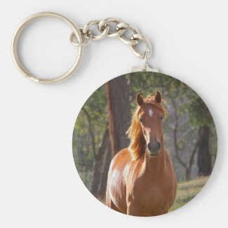 Horse In The Woods Key Chain