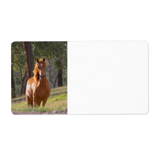 Horse In The Woods Custom Shipping Labels