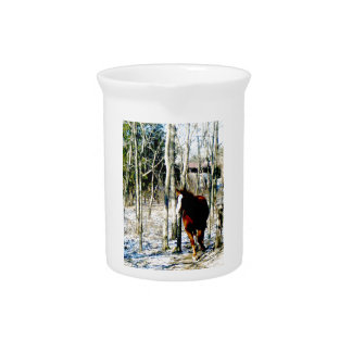 Horse in the woods beverage pitcher