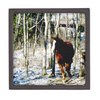 Horse in the woods premium trinket box