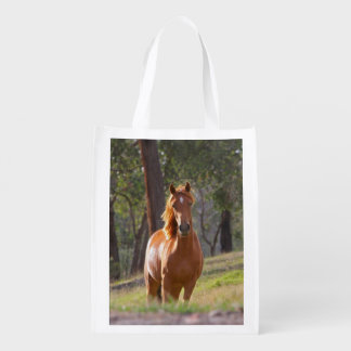 Horse In The Woods Reusable Grocery Bag