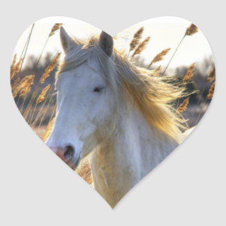 Horse In Wheat Heart Sticker