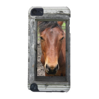Horse in Window iPod Touch Case