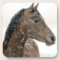 Horse in Winter Beverage Coaster