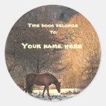 Horse in Winter Bookplate Classic Round Sticker