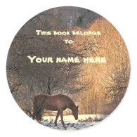 Horse in Winter Bookplate Stickers