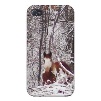 Horse In Winter Case iPhone 4 Case