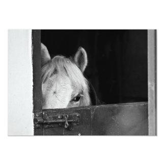 "Horse inside a Stable Invitation 5"" X 7"" Invitation Card"