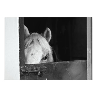Horse inside a Stable Invitation