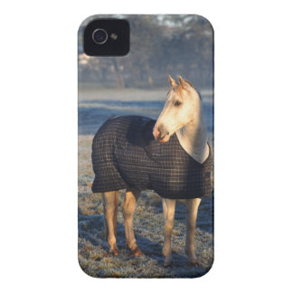 horse iPhone 4 cover