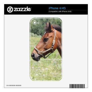 Horse iPhone 4 Decals
