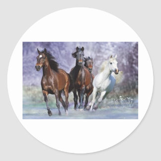 Horse items classic round sticker