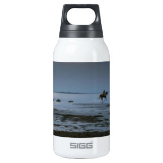 HORSE JOYRIDE BY THE BEACH ; Romantic Evening Insulated Water Bottle