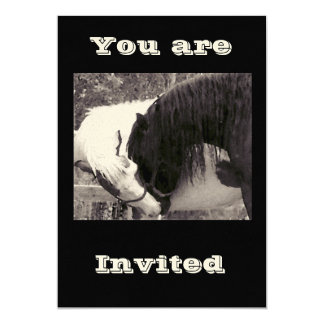 horse kiss Invitations