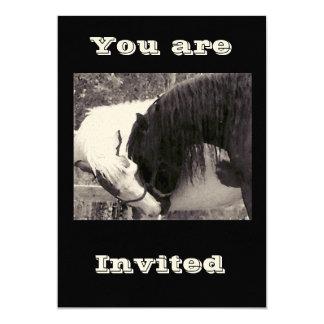 horse kiss Invitations