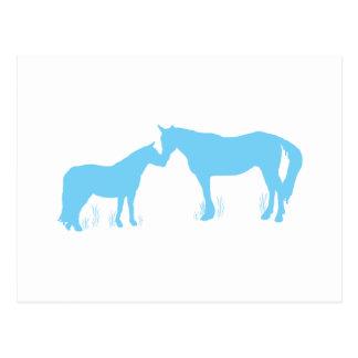 Horse Kisses (Aqua) Postcard