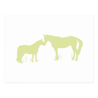 Horse Kisses (Green) Postcard