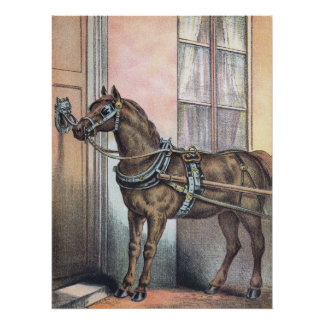 Horse Knocking At The Door Perfect Poster