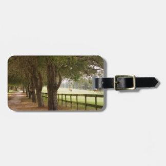 Horse Lane Bag Tag