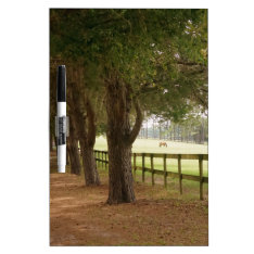Horse Lane Dry-erase Board at Zazzle