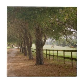 Horse Lane Tile