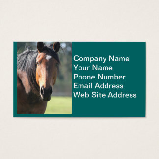 Horse: Large Brown Horse Close-Up of Face Business Card