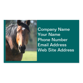 Horse: Large Brown Horse Close-Up of Face Double-Sided Standard Business Cards (Pack Of 100)