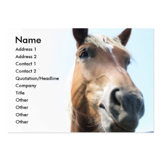 Horse Large Business Cards (Pack Of 100)
