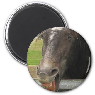 Horse Laughing 2 Inch Round Magnet