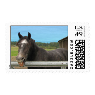 horse laughing postage stamp