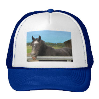 Horse Laughing Trucker Hats