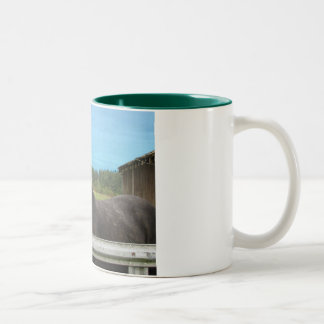 Horse Laughing Two-Tone Coffee Mug