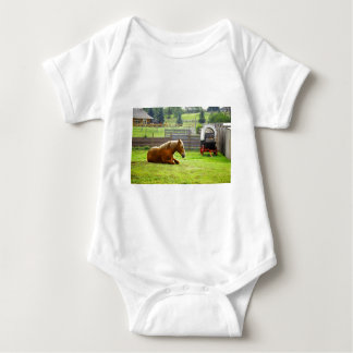 Horse laying in a pasture baby bodysuit
