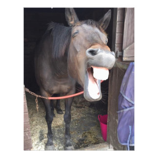 Horse Letterhead