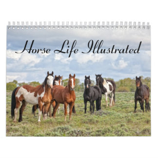 Horse Life Illustrated Calendar
