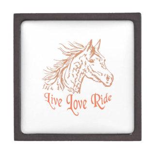 HORSE LIVE LOVE RIDE PREMIUM TRINKET BOX