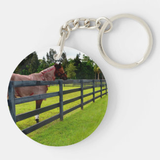 Horse looking down fence path keychain