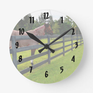 Horse looking down fence path round clock