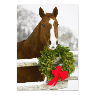 Horse looking over fence card