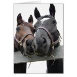 Horse-Love-1 Tarjeta