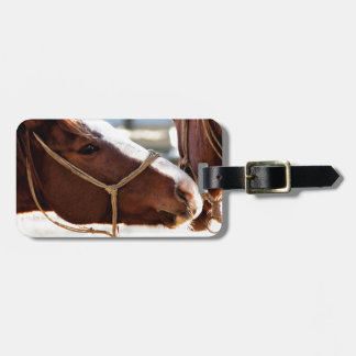 Horse Love Bag Tag
