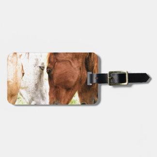 Horse Love Luggage Tag