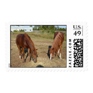 Horse Love Postage