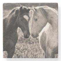 Horse Love Stone Coaster