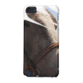 Horse Lover Stallion Face Closeup Animal Photo iPod Touch 5G Covers
